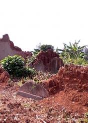 Les rescapés du génocide des Tutsi en France