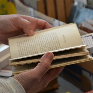 Un quart d'heure de la vie d'une bibliothécaire