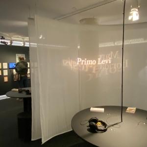 Visite guidée de l'exposition La voix des Témoins