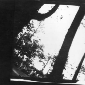 Photographies clandestines des camps nazis