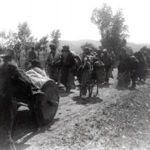 Le génocide des Arméniens de l'Empire ottoman, par Yves Ternon