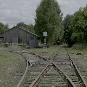 """""""La SNCF sous l'Occupation"""" de Catherine Bernstein"""